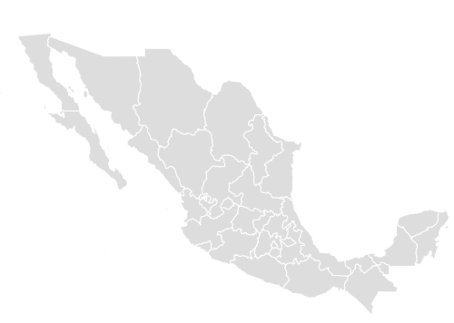 PaintColor MEXICO Maps with Statistics Online Free Tool – Plain Map of Mexico