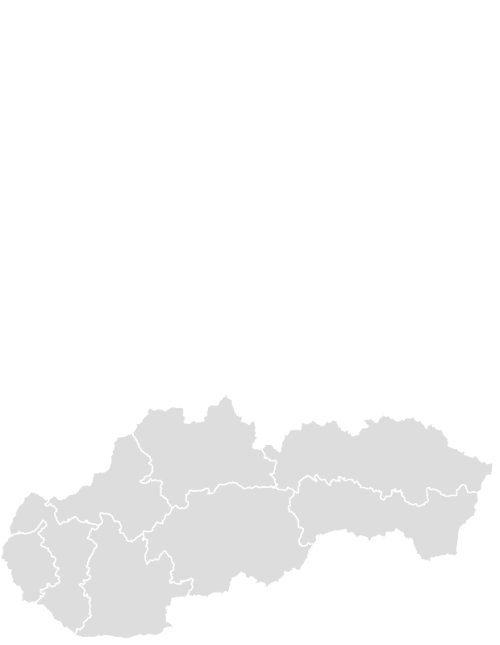 Color Blank Map of SLOVAKIA with Statistics